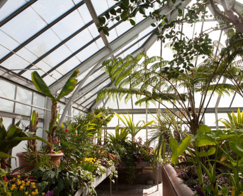 Enjoyable Adding An Attached Greenhouse To Your House Ence Rentals Home Remodeling Inspirations Gresiscottssportslandcom